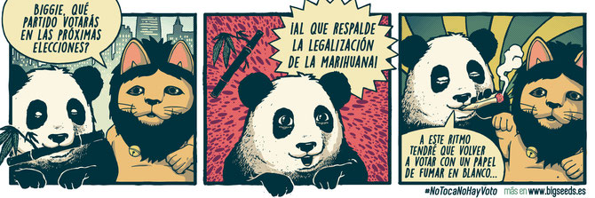 humor cannabico viñetas oso panda biggie BIG Seeds