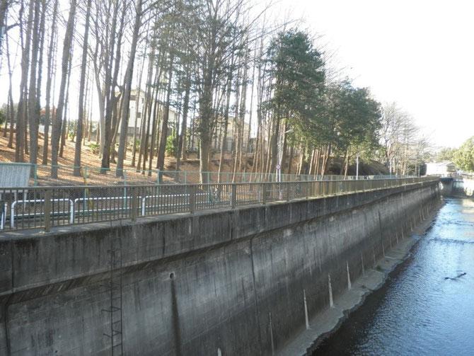茂呂遺跡のある石神井川べりの風景
