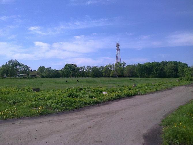 Раніше стадіон був обнесений огорожею й зарослий деревами й кущами. Зараз лишилась лише трава й футбольні ворота... Фото Юрія Зіненка