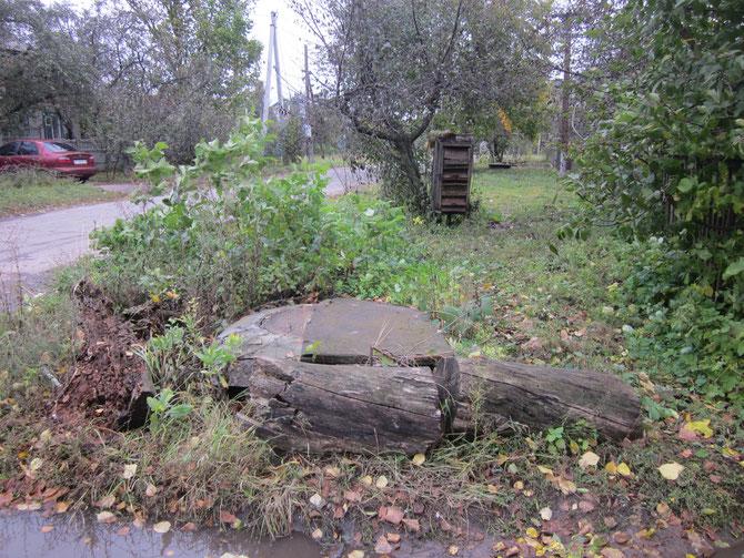 Тротуар понад забором давно заріс бур`янами, бо поштову скриньку не використовують років з десять