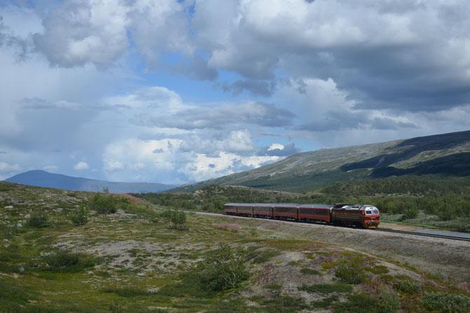 Norwegischer Zug in der Nähe des Polarkreises