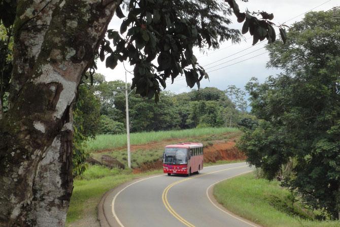 """Ein Bus der Gesellschaft """"Tracopa"""" im südlichen Costa Rica"""