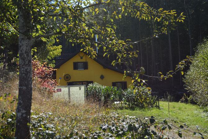 """Unser kleines """"Hexenhaus"""", direkt am Wald, hier fühlen wir uns wohl :-)"""