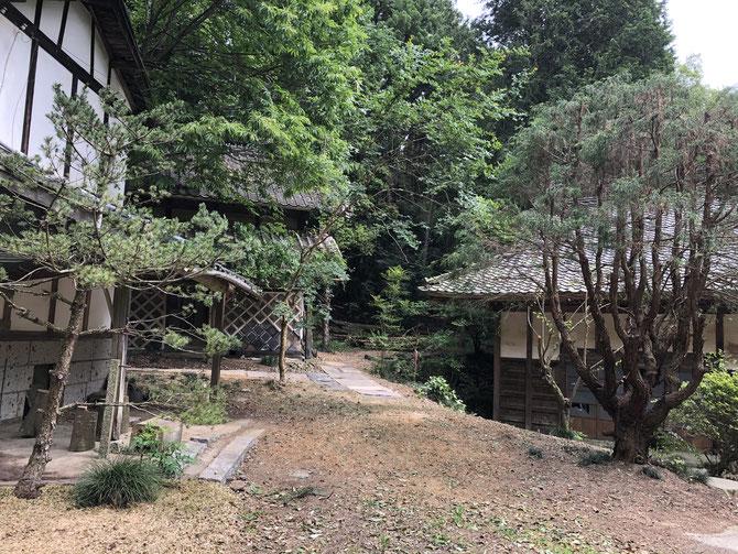 蔵への道(ウッドチップ)