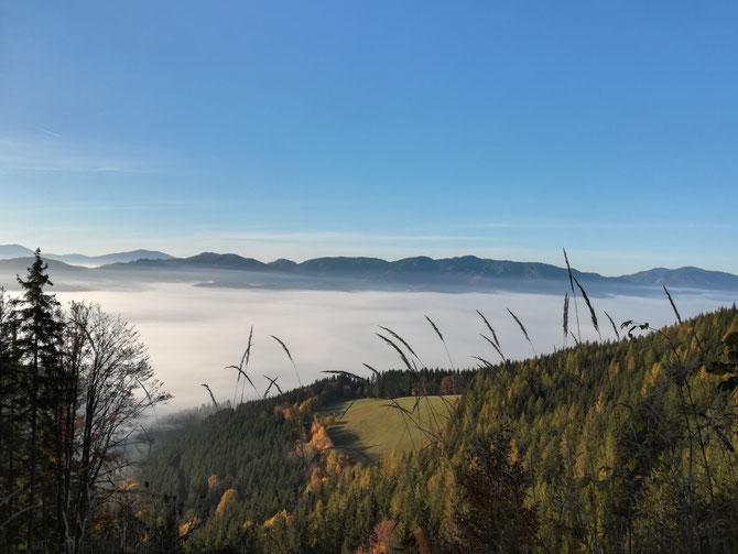 Am linken Wiesenrand steht unser Haus, über der Nebel Grenze