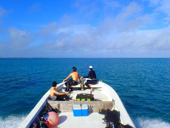 石垣島でのんびりダイビング「一日をのんびり過ごす」スタイルのダイビングショップ