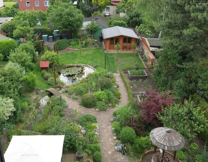Übersicht über den Garten im Juni 2014