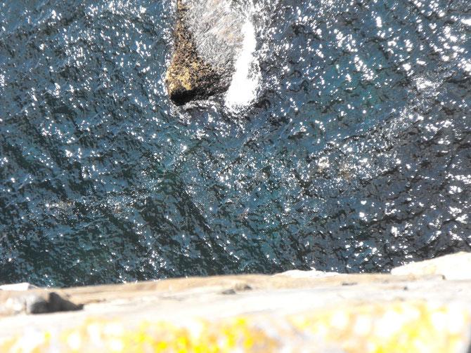 断崖の下ではロブスターが獲れる