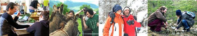 Les rencontres et séjours interculturels franco-allemands, en lien avec l'environnement