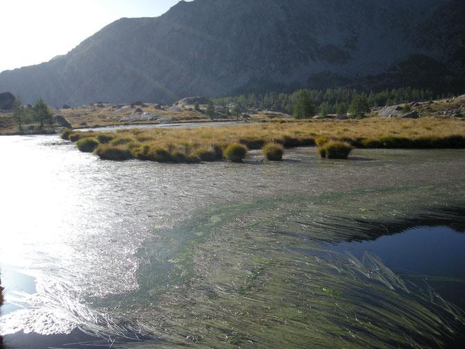 Lac Long Infèrieur 2
