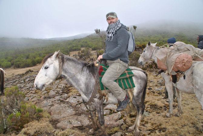 Bale Mountains, Pferdetrekking, Bale Trek, Äthiopien, Reiseführer, Afrika, Engelbert Franzl