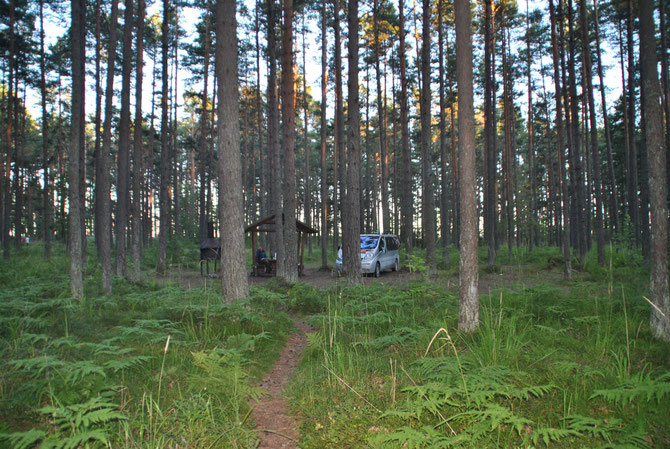 Wild Camping, Wild Campen, Peipussee, Estland, RMK, Opel Vivaro