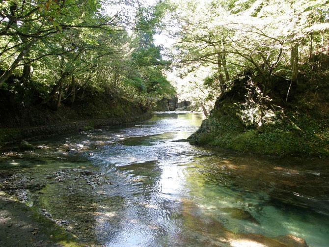 生産地の一つ、秋田市岩見三内のあきたこまちは、日本で五指に入る清流・岩見川上流の水で作られます。