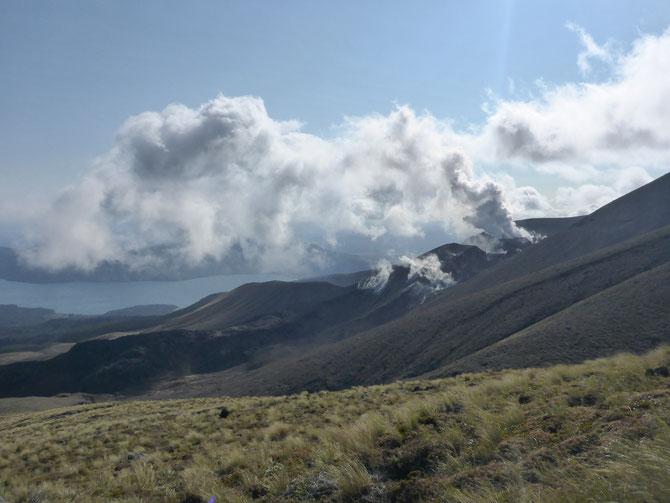 Rauchende Schlote im Te Maari-Bereich