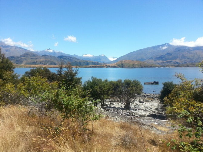 Am Lake Wanaka