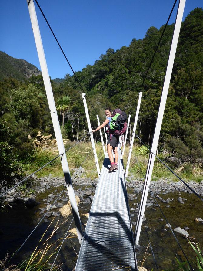 Brücke im Kaweka Forest Park