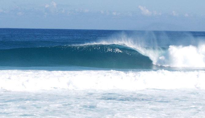 surf, isabela, surfing, pr