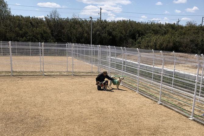 せとうちドッグパーク/せとうち保護犬猫の里 ドッグラン利用規約