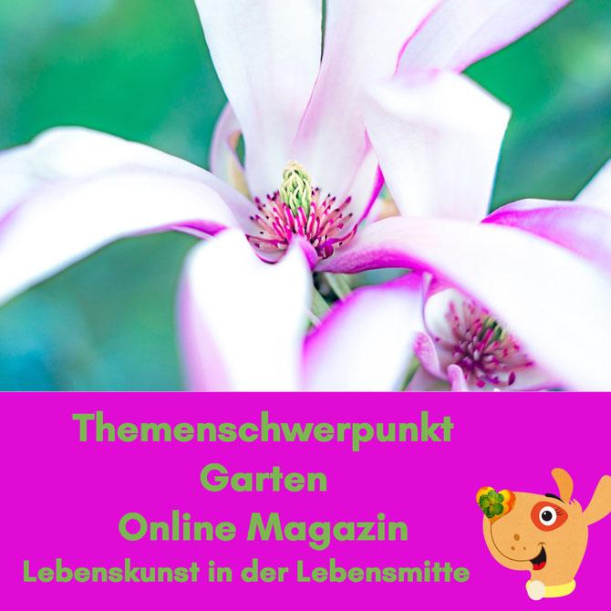 Magnolien Online Magazin