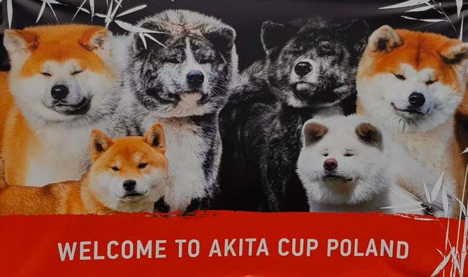 AKITA CUP & NIPPO Show Poland 2020. Already in 12 months !!! We invite you to the last weekend of September 25/26.09.2020.