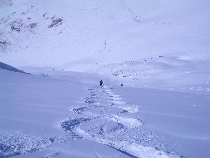 Vous voulez profiter d'un moniteur diplômé dans la station de ski de vos rêves, appelez-moi.  Nous établirons un programme pour découvrir une station, à la journée ou sur plusieurs jours et  pourquoi  pas profiter ensemble de superbes hors pistes que nous