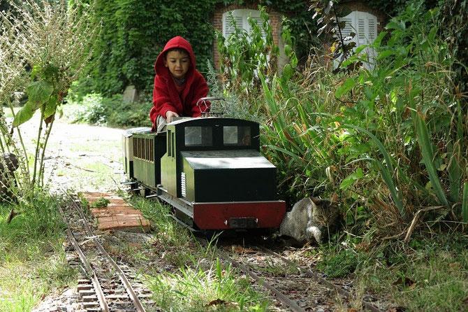 Surpris par l'arrivée du train, ce chat qui paressait un peu trop près de la voie, prend la fuite quand le jeune Yannis arrive avec la boîte à sel.