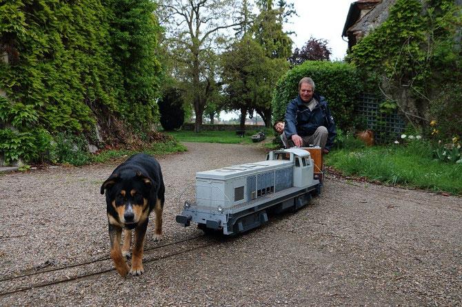 Après les chats, les chiens ! Notre ami Arlequin, qui ne dédaigne pas à l'occasion faire un petit tour de train, passe avec dédain devant la BB 63000 conduite par son maître qui doit freiner pour ne pas le heurter.