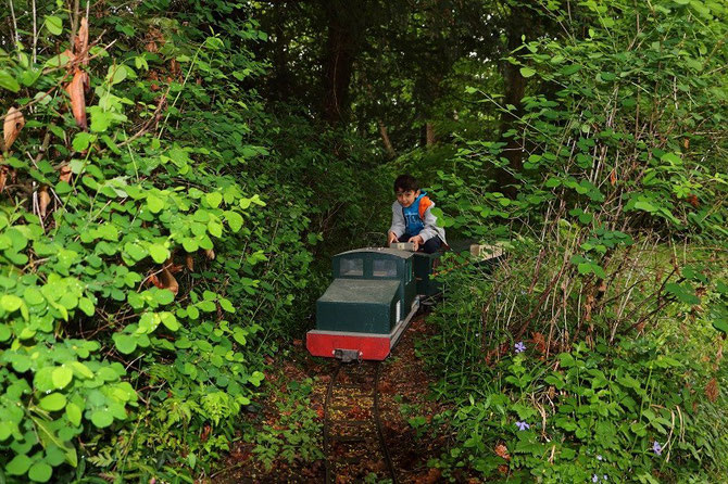 """Cette fois-ci aux commandes de la """"boîte à sel"""", Yannis passe à travers les sous-bois du parc."""