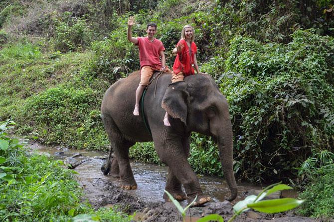 """Reiten auf Elefant """"Mr. Pongsip"""""""