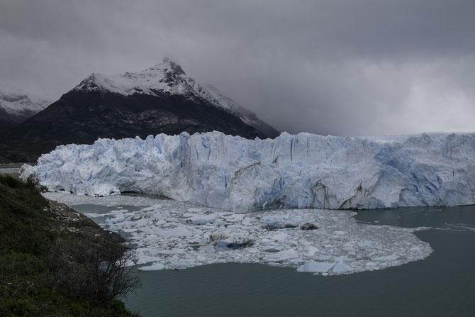 Abgebrochene Eisbrocken treiben vor der Gletscherfront des Perito Moreno