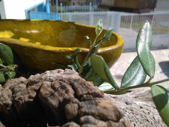 Ciotola ceramica Le Terre di Rò