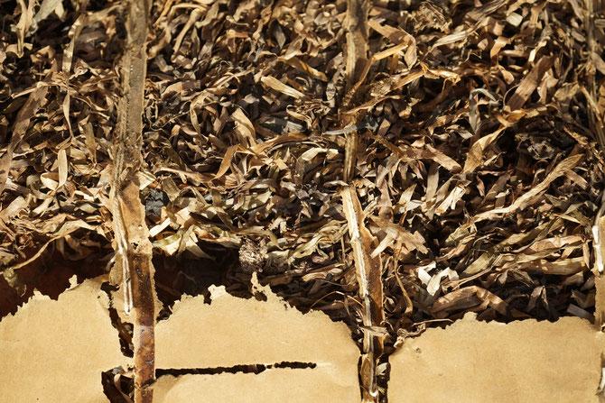 Seegrasdämmmatten, nur das Papier wurde von Ameisen angefressen
