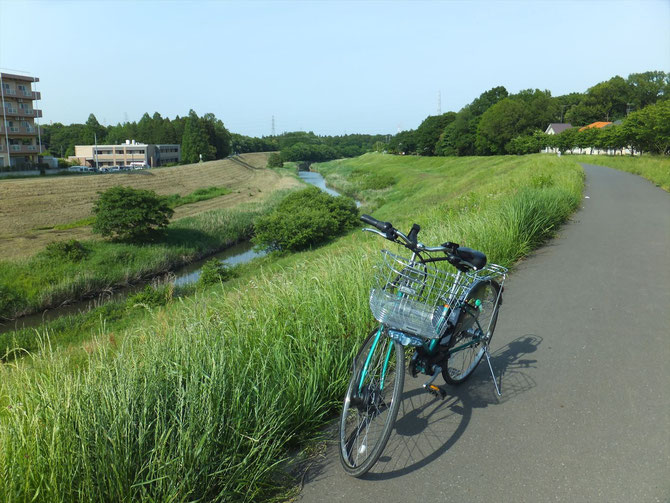 Bike Road of Tone Waterway