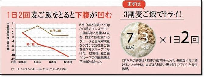 ※日経BP社より抜粋