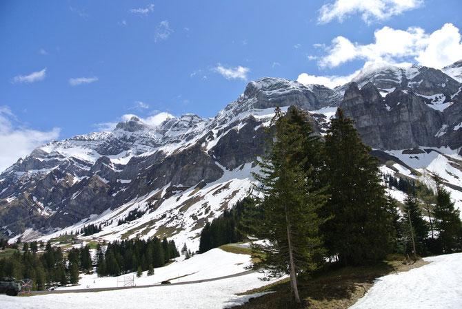 """""""Der Berg"""" - Blick auf den Säntis in der Schweiz vom Scheitel des Schwägalppasses"""