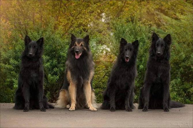 vlnr: Bria, Anup, Danou und Buk