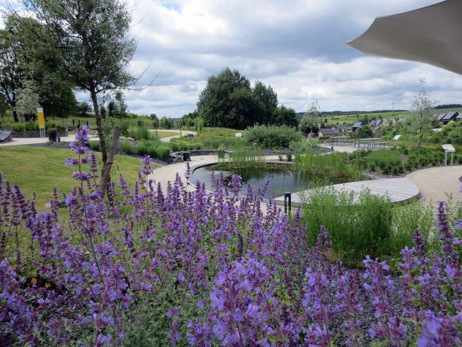 Der Teuschnitzer Kräutergarten im New-German-Style direkt an der Arnika-Akademie im Sommer 2017.