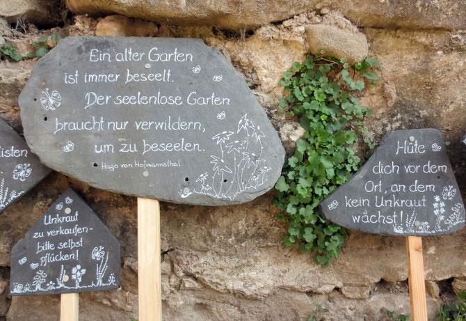 Rosenmesse in Kronach auf der Feste Rosenberg: Gleich mit drei Bildern (ich konnte mich nicht entscheiden). Unsere Schieferschilder vor historischer Kulisse und meiner Lieblingspflanze, dem Zymbelkraut.
