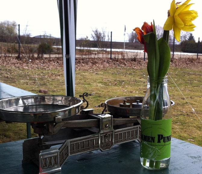 Stillleben mit Frühlingsblumen, SamenPunk-Logo und alter Waage zur Samenbomben-Herstellung