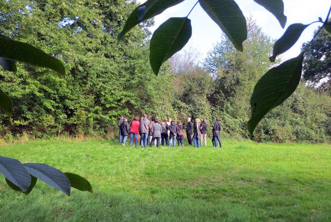 Wildkräutererlebnis im Herbst - unsere Gruppe an der Wildfruchthecke neben meinem Garten, eingerahmt von Walnussblättern.