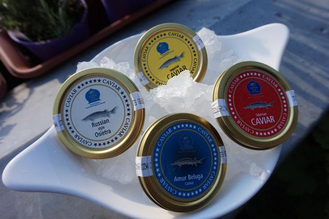 Kaviar und Lachs