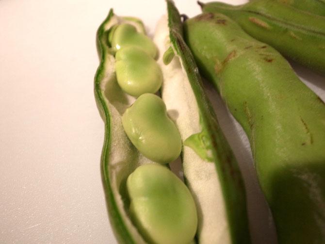空豆とグリンピースパスタ
