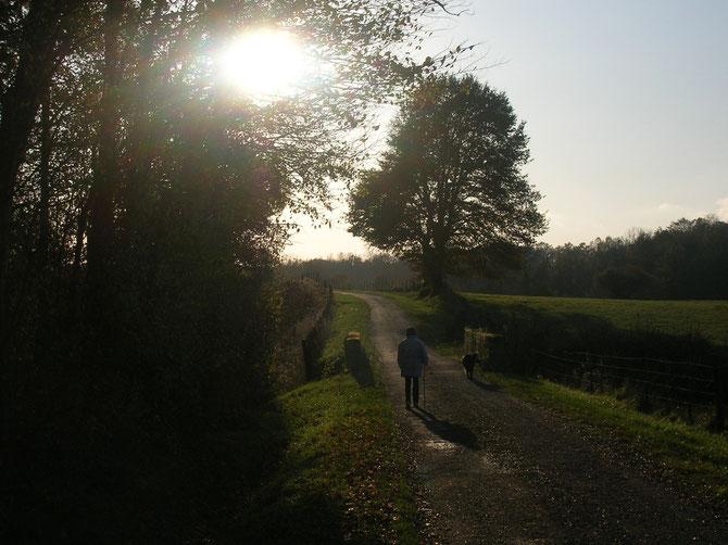 Chemin faisant - Photo droits réservés