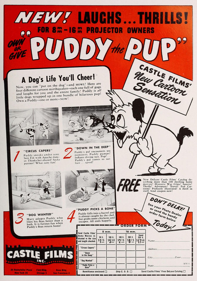 Own a Puddy -- one or more -- NOW!