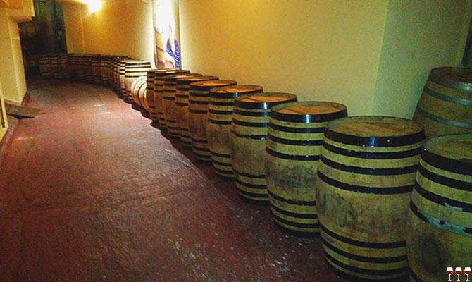 Sardegna, Sud Italia. Itinerari di vino. Foto Blog Etesiaca