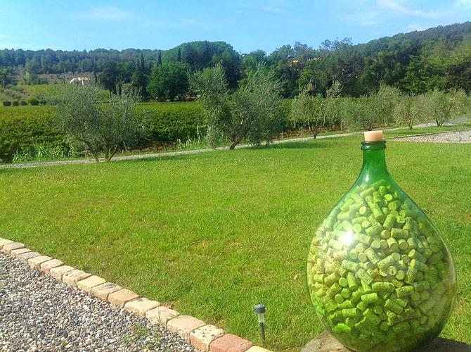 Toscana. Itinerari di vino. Riparbella, Podere La Regola. Foto Blog Etesiaca.