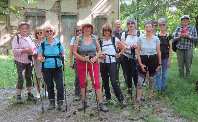 13 Participants.