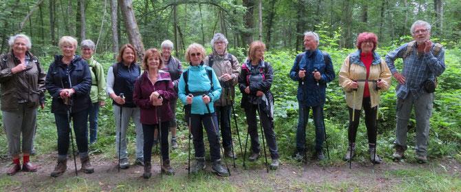 13 Participants