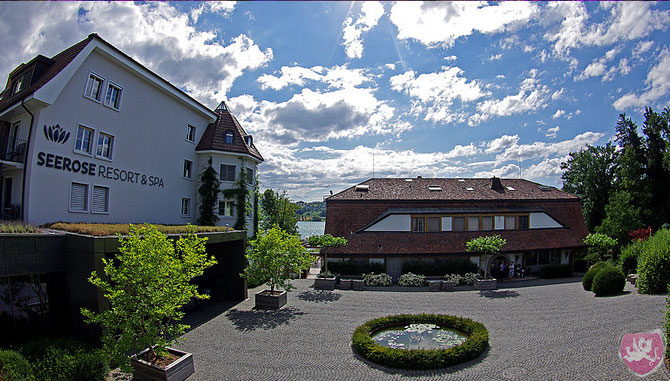 Hotel Seerose Resort Spa Meisterschwanden DJ Dubi Hochzeit Heiraten Wedding