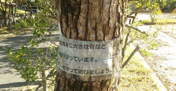 木に巻き付けられたラミネートが半分に裂けていました